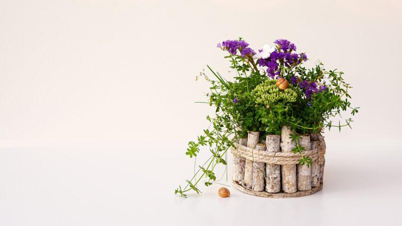 Dekorowanie ogrodu – dekoracje donic