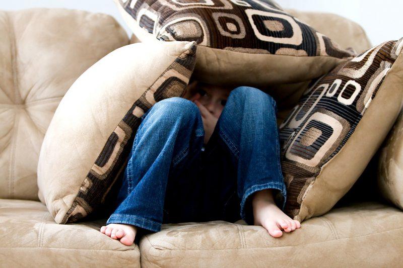 Jakie poduszki dekoracyjne wybrać do salonu?
